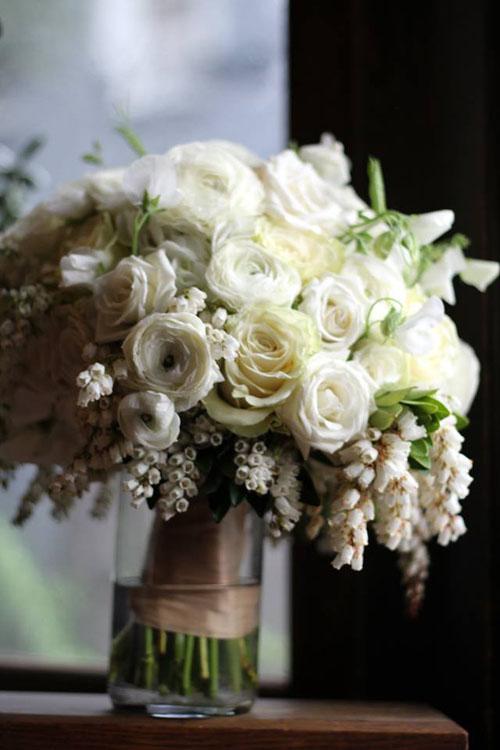 Spiraea silver wedding