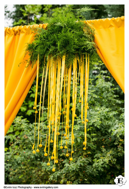 yellow craspedia wedding arch