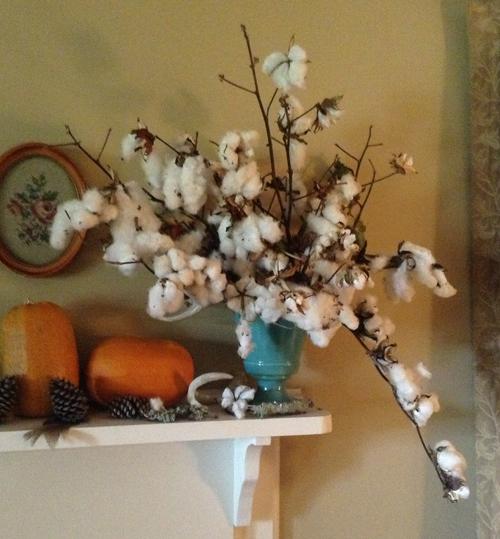 all cotton arrangement in blue vase