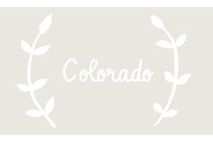 colorado floral design class