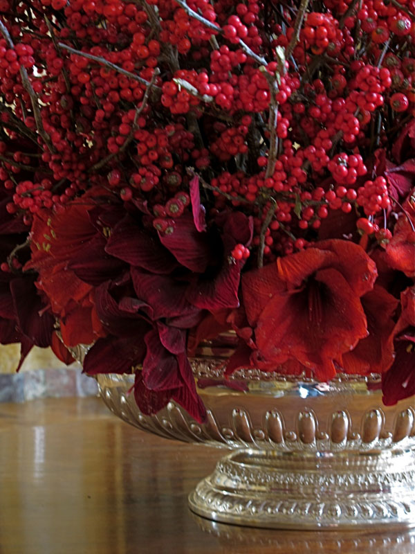 red amaryllis and ilex berry centerpiece