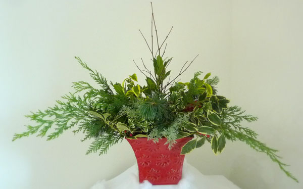 greenery arrangement in a red container