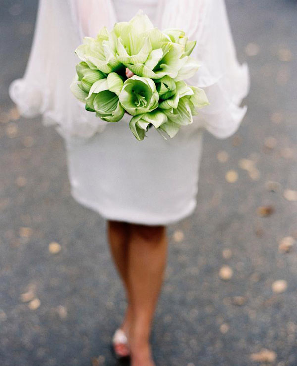 green amaryllis bridal bouquet