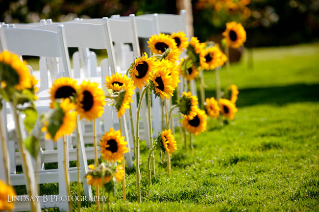Sunflowers decorating the Ceremony Aisle by The Flower House