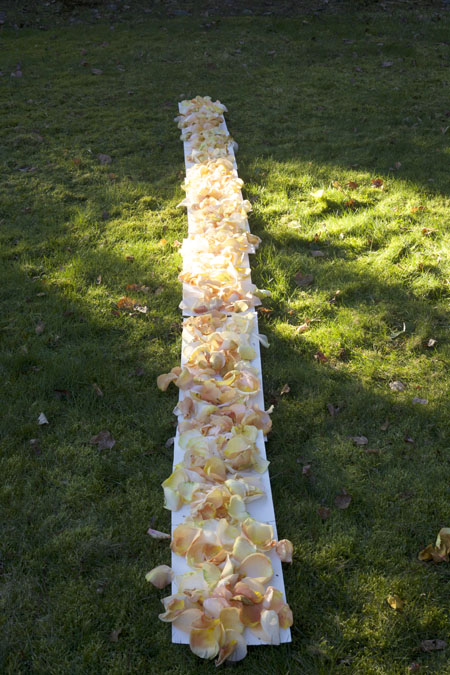 measuring aisle petals