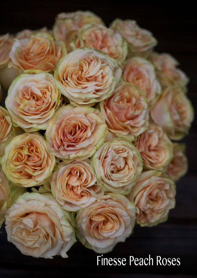 The Peach Rose Study Flirty Fleurs The Florist Blog