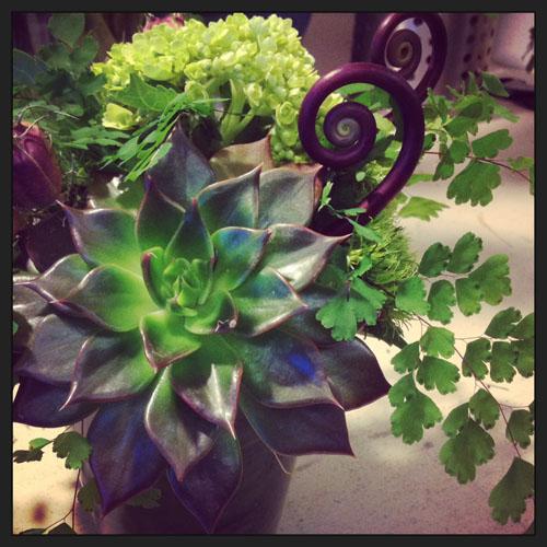 Woodlands floral design Seattle