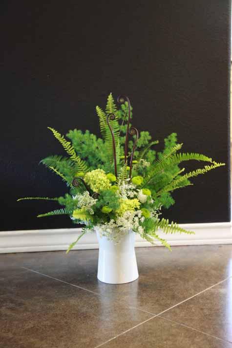 Ferns Ferns Amp More Ferns Flirty Fleurs The Florist Blog