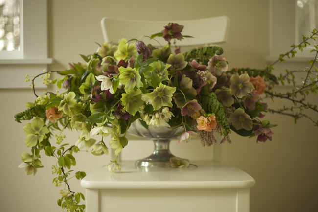 Bella Fiori, Green and Burgundy Hellebores, Peach Quince and Akebia Vine