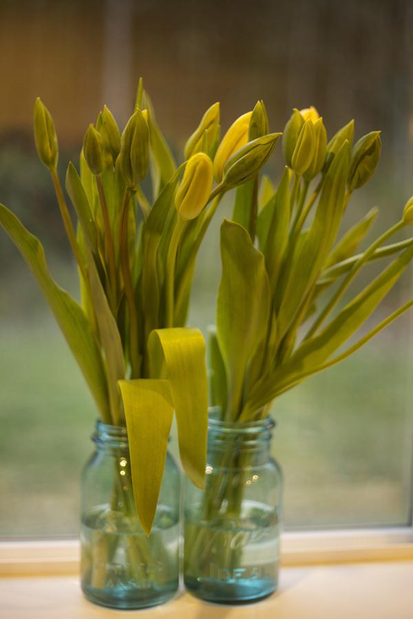 Flirty Fleurs - Yellow tulips in blue jars