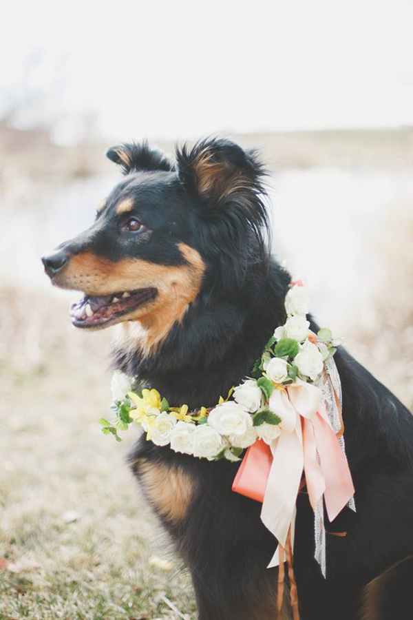 Alluring Blooms, Maizy wearing a floral wreath
