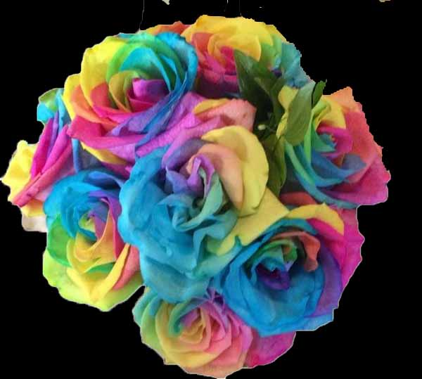 Rainbow rose color study flirty fleurs the florist blog for How to color roses rainbow