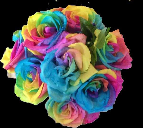 Rainbow rose color study flirty fleurs the florist blog for How to color roses rainbow