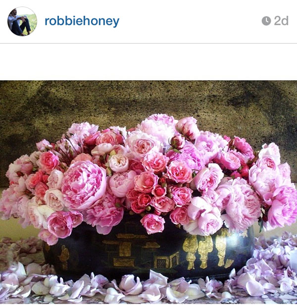 robbie honey on instagram