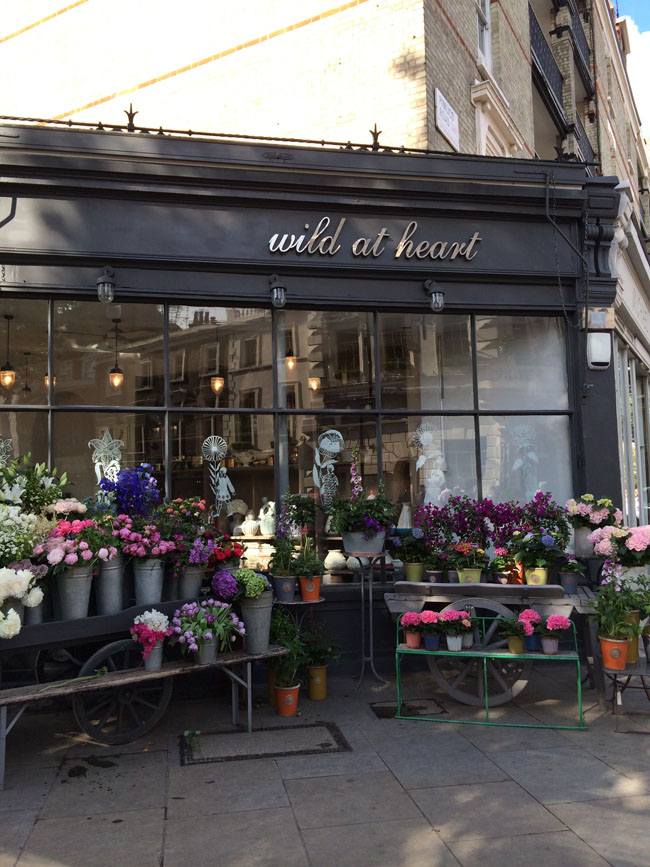 Wild at Heart on Pimlico Road, London
