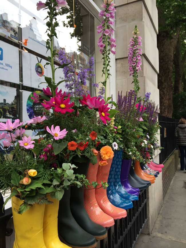 Chelsea In Bloom - cute rain boots with flowers