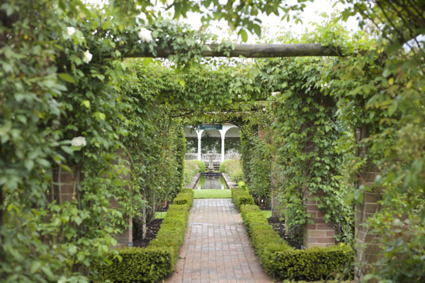 David Austin Garden Path