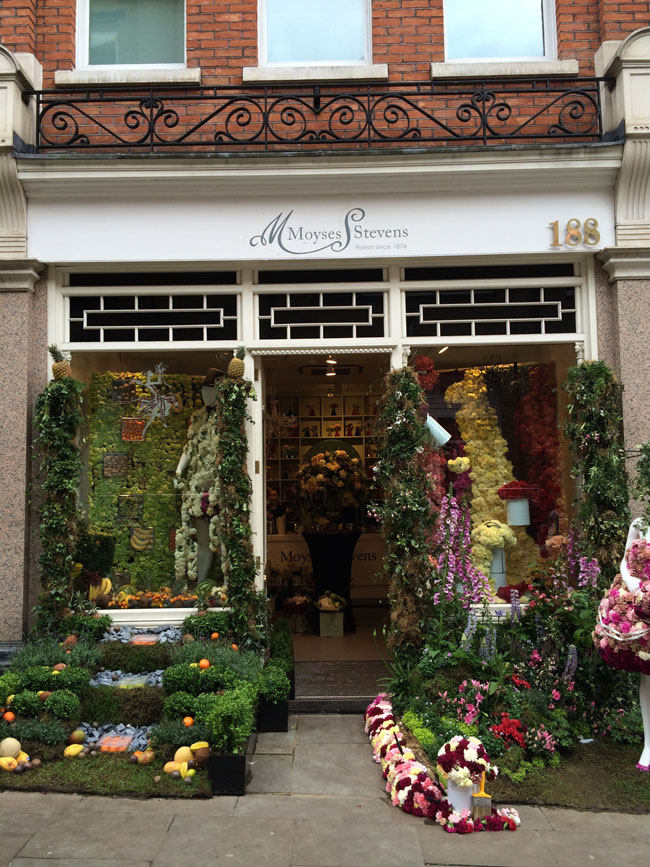Chelsea In Bloom - Moyses Stevens Flower Shop, London
