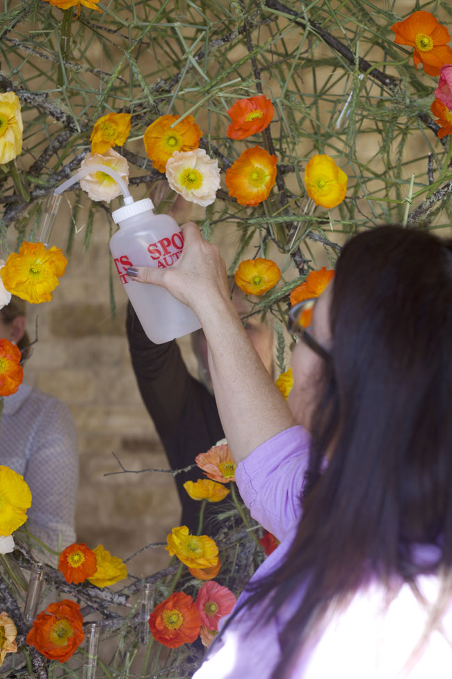 Florabundance Design Days & Chapel Designers Conference -