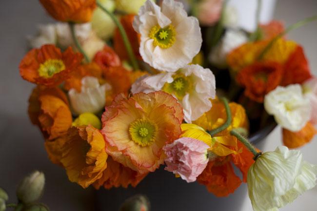 Florabundance Design Days & Chapel Designers Conference - Poppies
