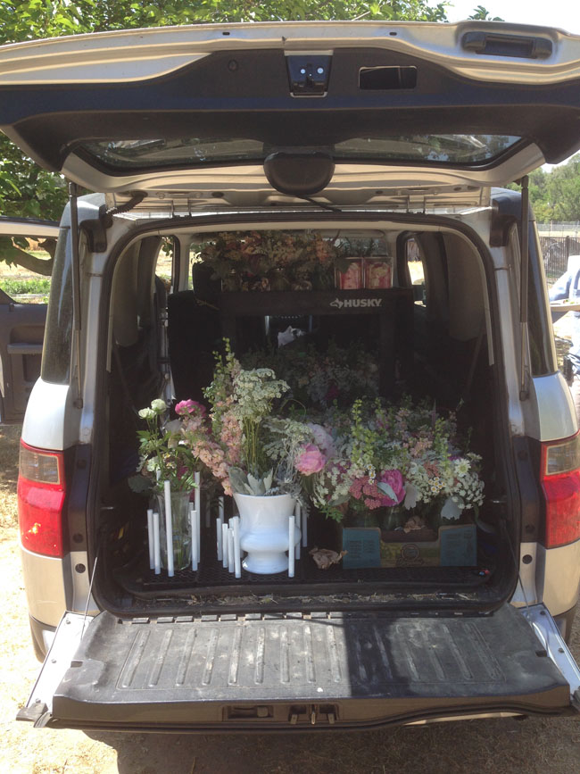 Verbena - Transporting Flowers