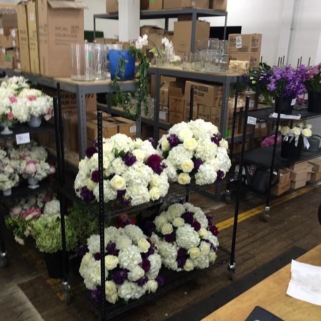 Exquisite Designs - Transporting flowers