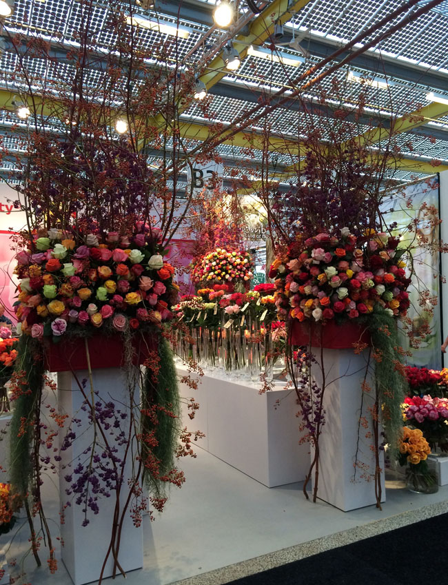 Holland IFTF Flower Show
