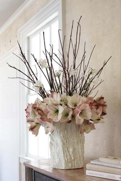 Amaryllis Flirty Fleurs The Florist Blog Inspiration
