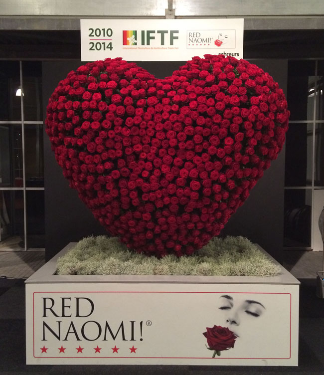 Heart of Red Naomi Roses at IFTF in Holland