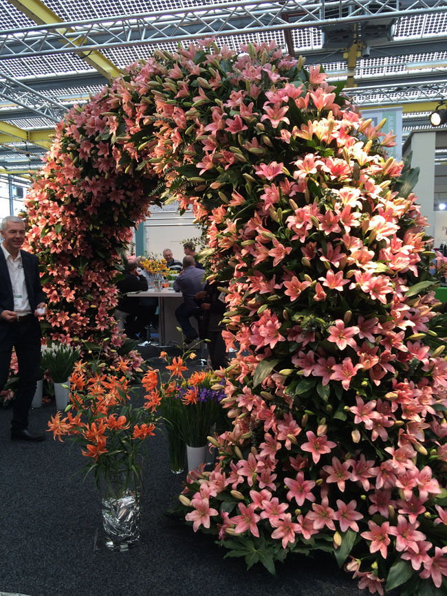 lilies arch at IFTF