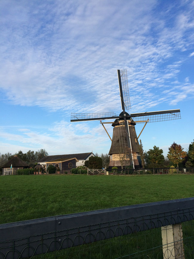 11/2 - Holland!