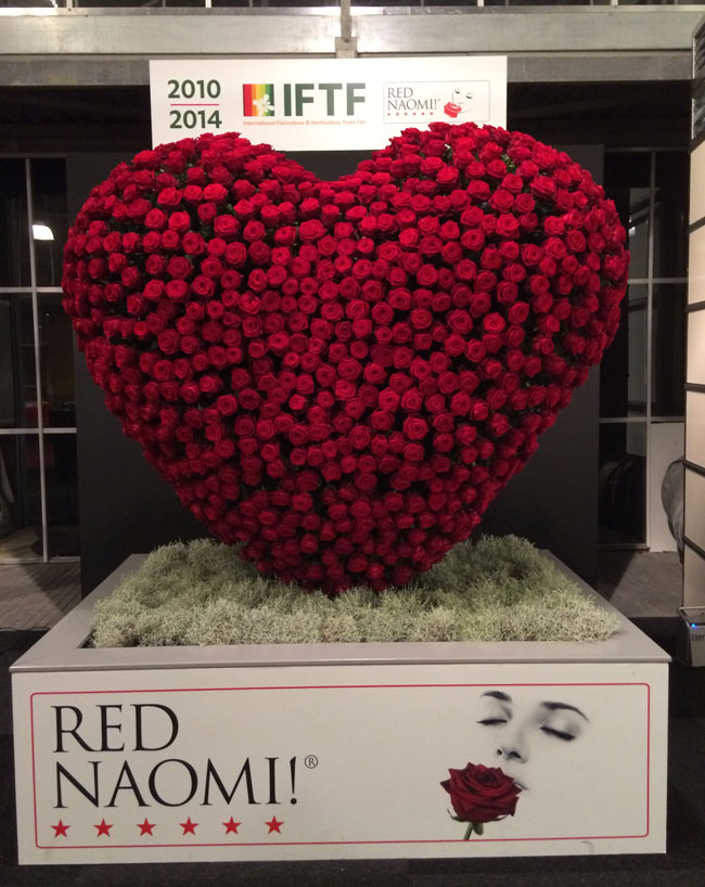 Red Rose Heart at IFTF