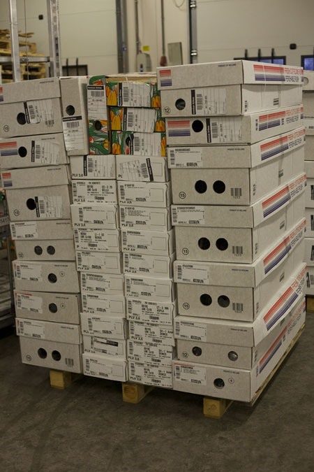 Holex Flower Holland - flowers packed on pallets
