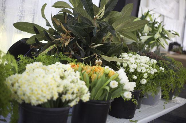 florabundance design days santa barbara