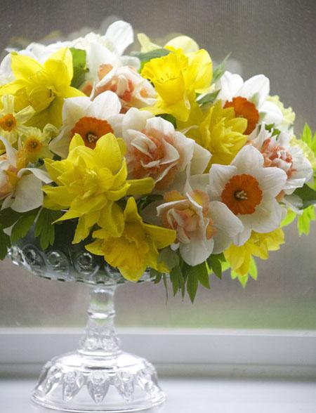 Design by Bella Fiori of Daffodils