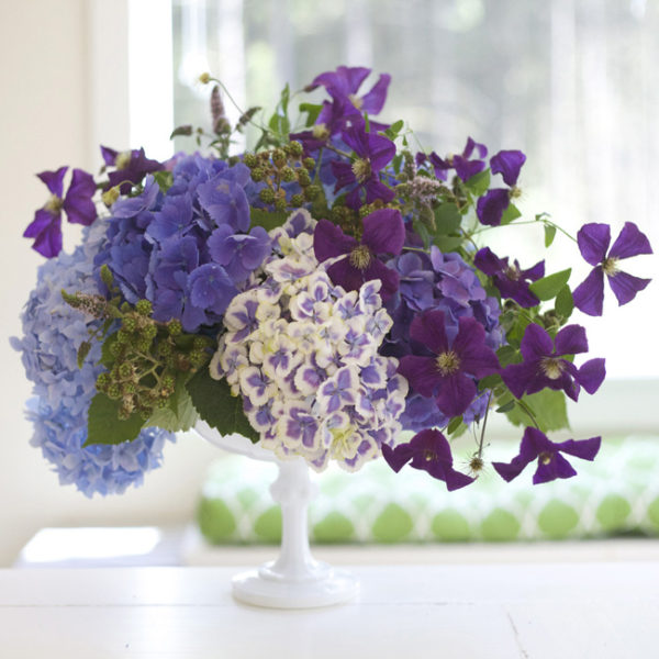 Bella Fiori; Hydrangeas and clematis with mint and blackberries set in a milk glass compote.