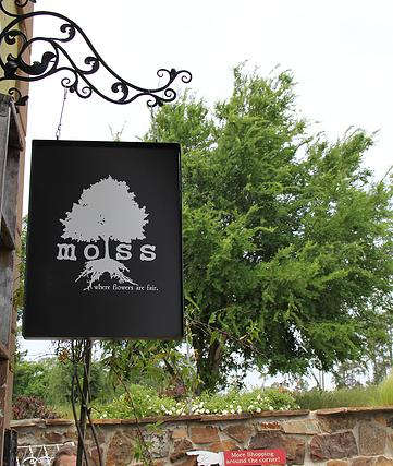 Moss Where flowers are fair