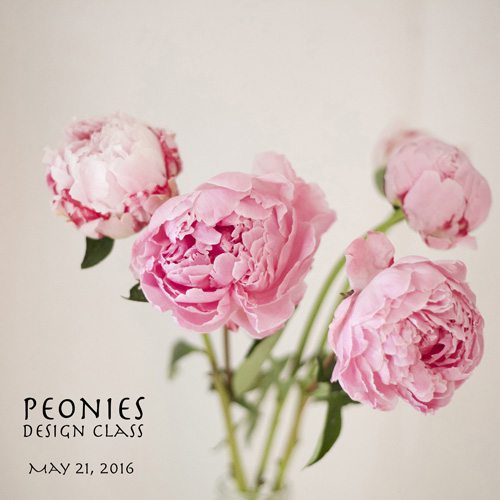 Peonies Floral Design Class Seattle Washington