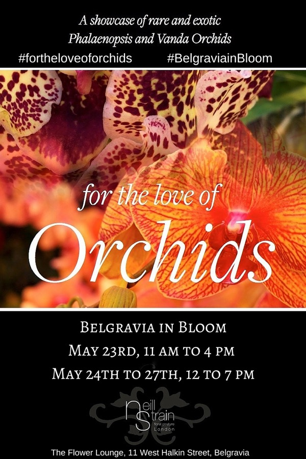 For the love of Orchids by Neill Strain Floral Courture, London