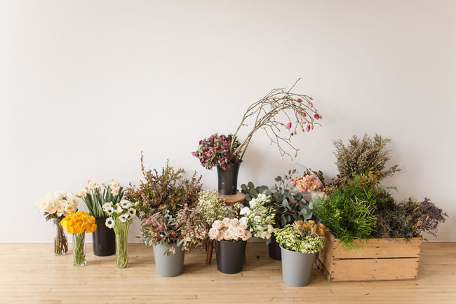 What Happens When Flower Friends Get Together by Lauren Wiebe