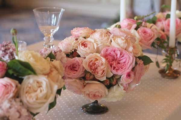 Kaleb Norman James - Centerpiece of Garden Roses