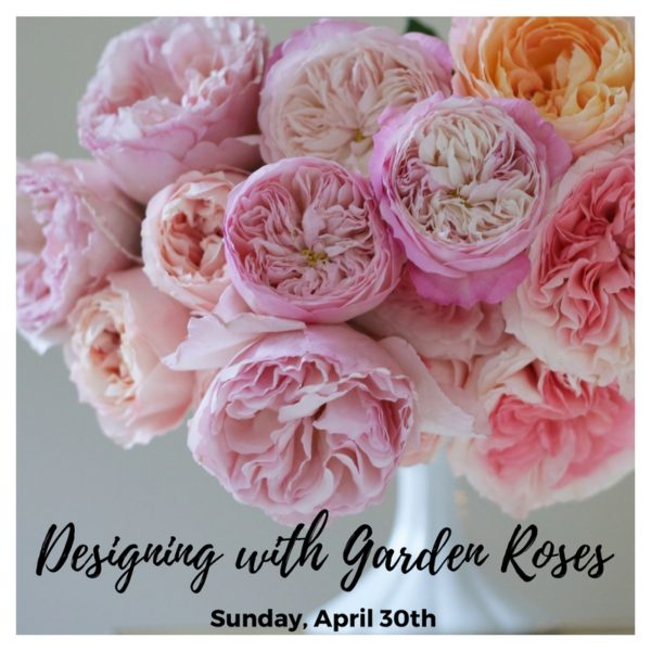 Workshop, Floral Design Class in Seattle, Washington - Designing with Garden Roses