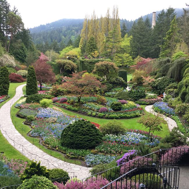 My Favorite Gardens