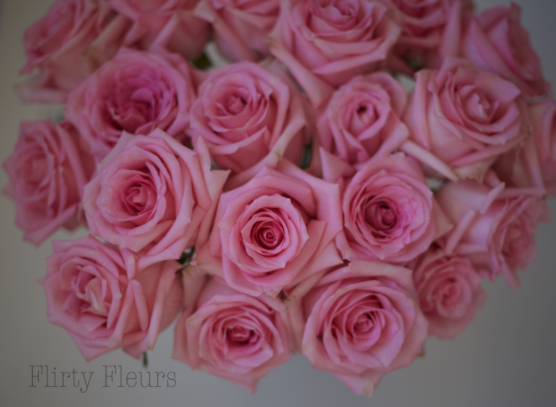 Flirty Fleurs Pink Rose Study with Roses from Amato Wholesale - Day 3 - Jessica