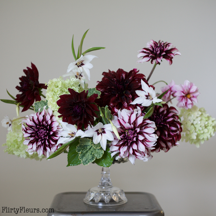 Bella Fiori Centerpiece with Longfield Gardens.  Morning collection from the garden, still a bit damp from the rain showers. Do you all know how pleasant smelling acidanthera is?! I had no idea until I cut a handful and brought them inside! Dahlias include Tartan, Rip City, and Edge of Joy. Dahlias and Acidanthera from @longfieldgardens