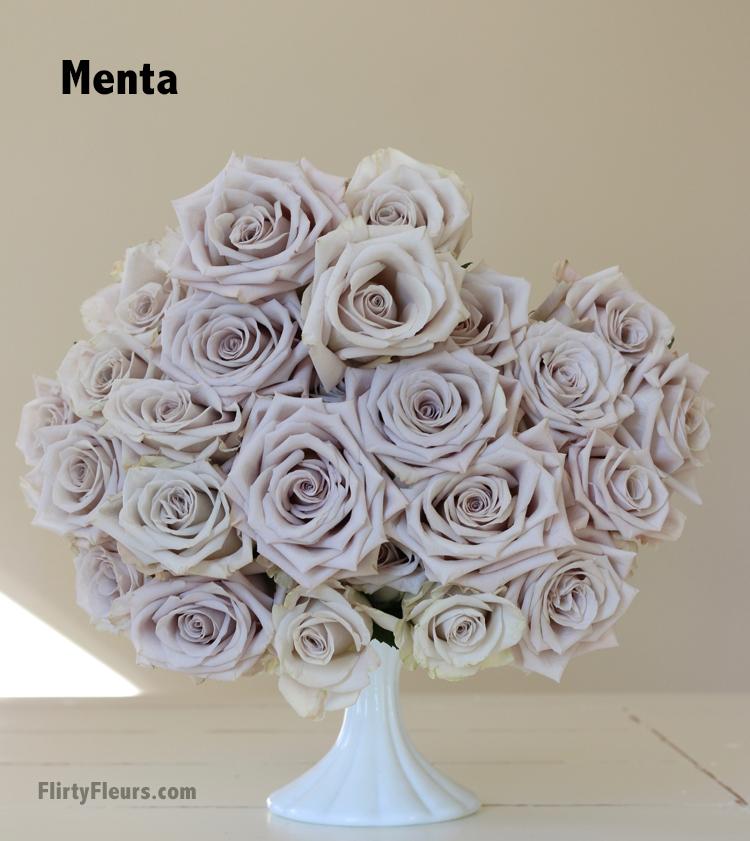Flirty Fleurs Beige to Brown Rose Color Study - Menta light lavender rose