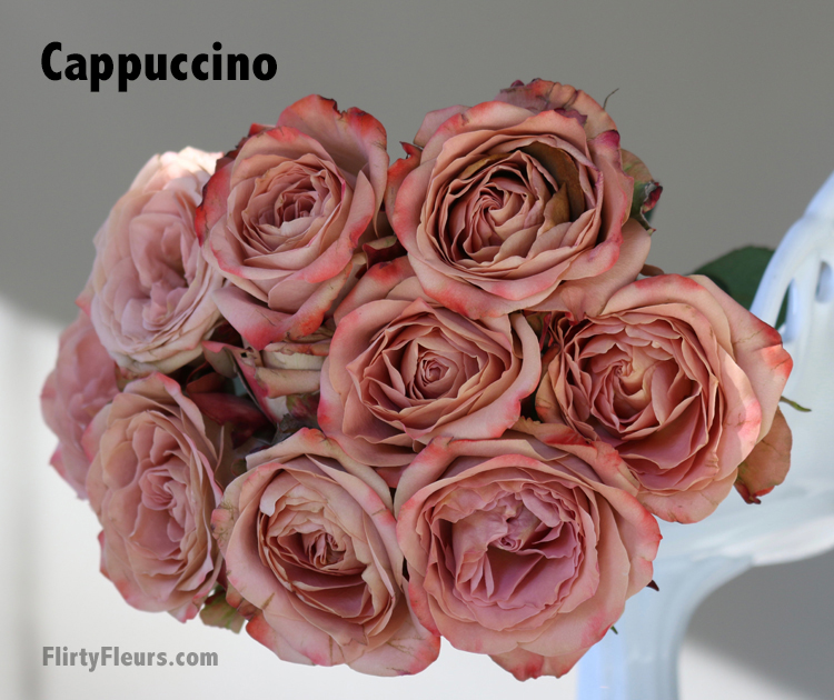 Flirty Fleurs Beige to Brown Rose Study - Cappuccino