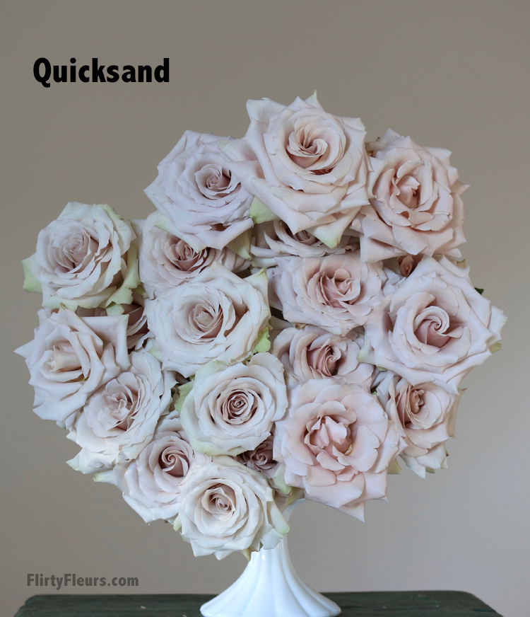 Flirty Fleurs Rose Study - Quicksand - pale blush rose, muddy colors, Beige to Brown Rose color study with flirty fleurs and mayesh wholesale