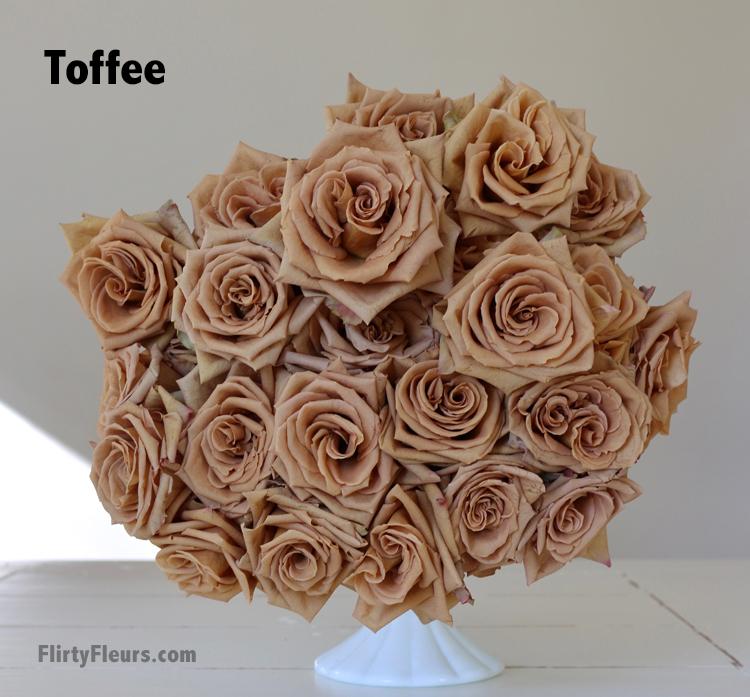 Flirty Fleurs Beige to Brown Rose Study - Toffee