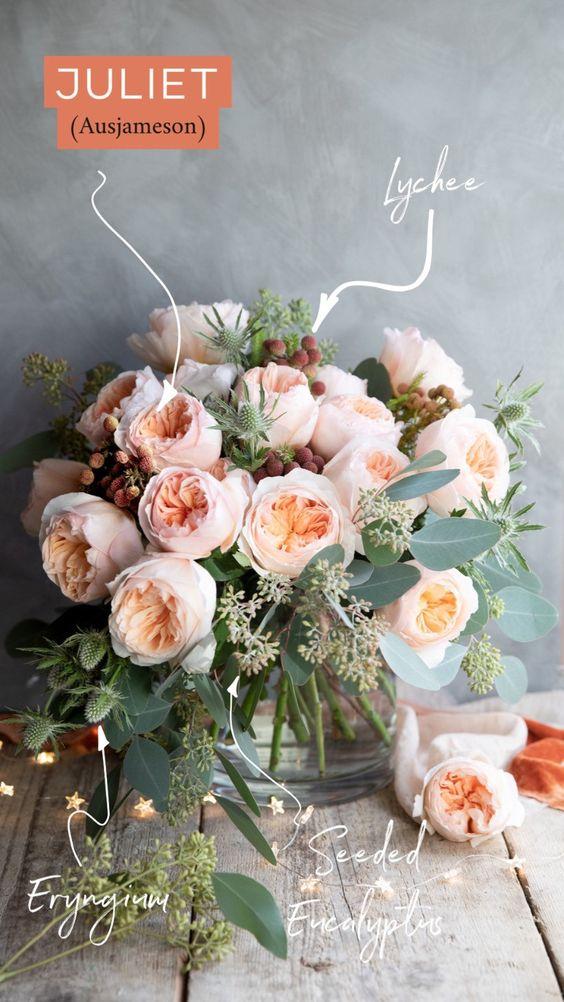 David Austin Peach Garden Rose named Juliet